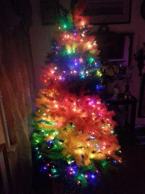 Customer Photos Color Burst Rainbow Christmas Tree : home design from www.houzz.com size 480 x 640 jpeg 101kB