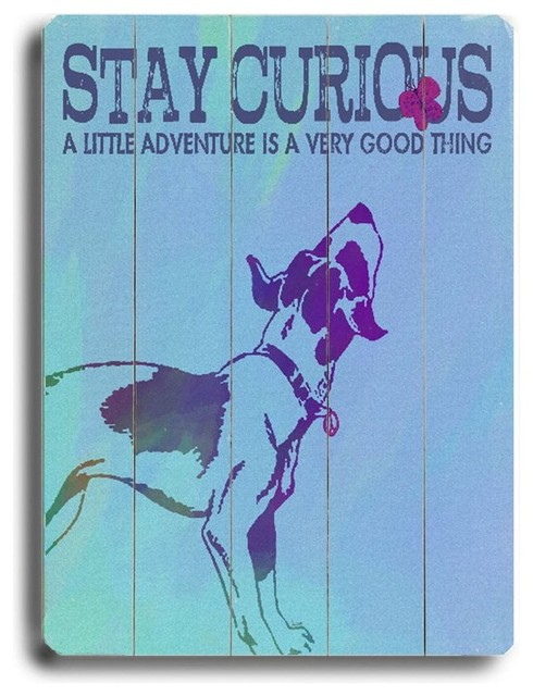 Artehouse 14 x 20 in. Stay Curious Wall Art Multicolor - 0003-9344-26