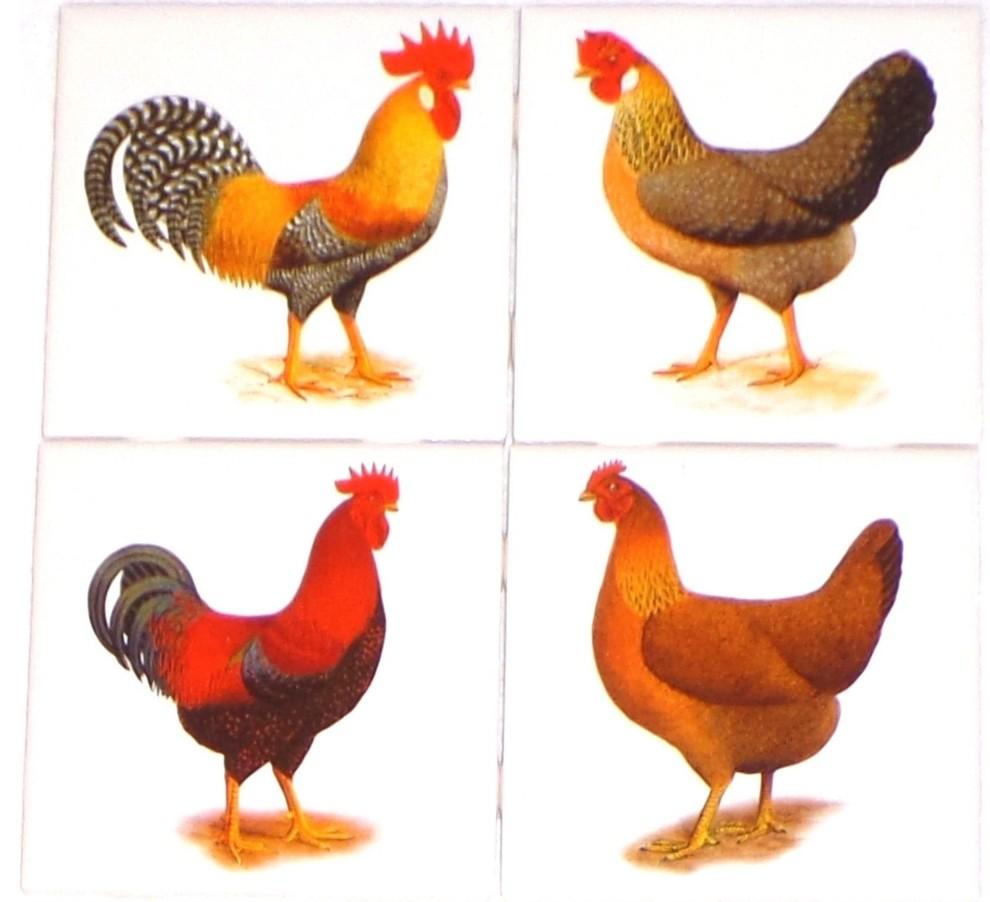 Rooster And Hen Kiln Fired Ceramic Tile Backsplash Chicken 4 Piece Set Farmhouse Tile Murals By Mottles Murals Ceramic Tiles