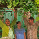 Living Green Design
