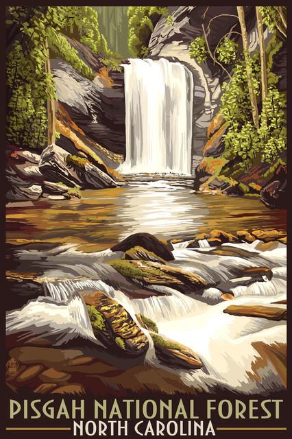 """pisgah National Forest, North Carolina"" Print, 24""x36""."