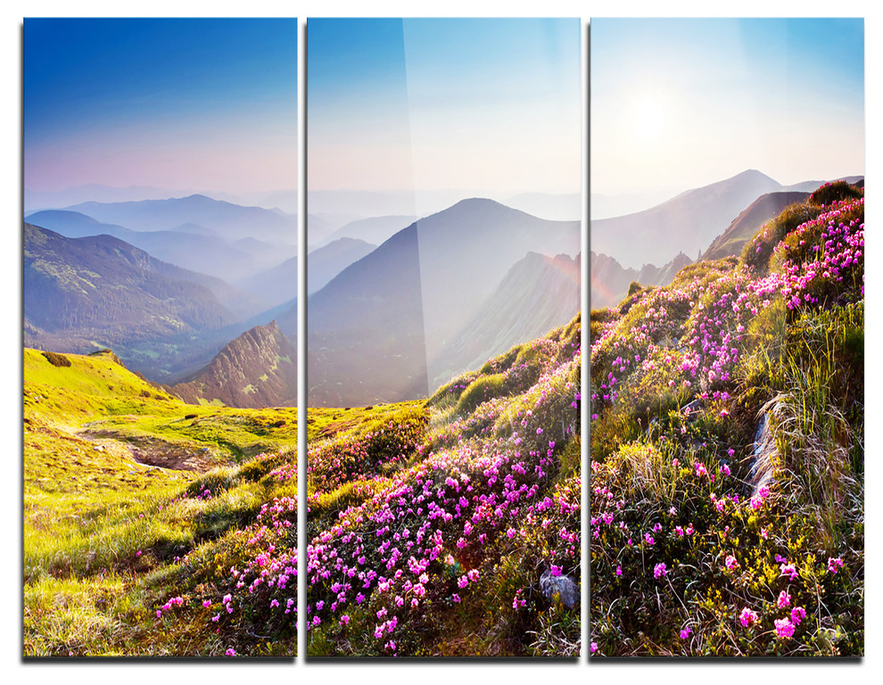 Magic Pink Flowers On Mountains Photo Metal Wall Art 3 Panels 36 X28 Contemporary Metal Wall Art By Design Art Usa