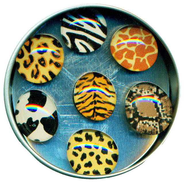 Animal Print Glass Gem Magnet Set