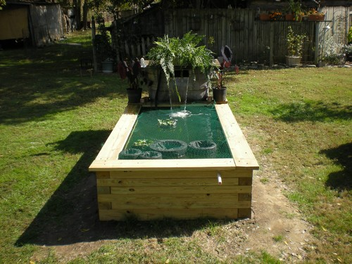 Picture of pond 2014 for Above ground koi ponds for sale