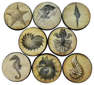Vintage Sea Life Cabinet Knobs 8 Piece Set Beach Style
