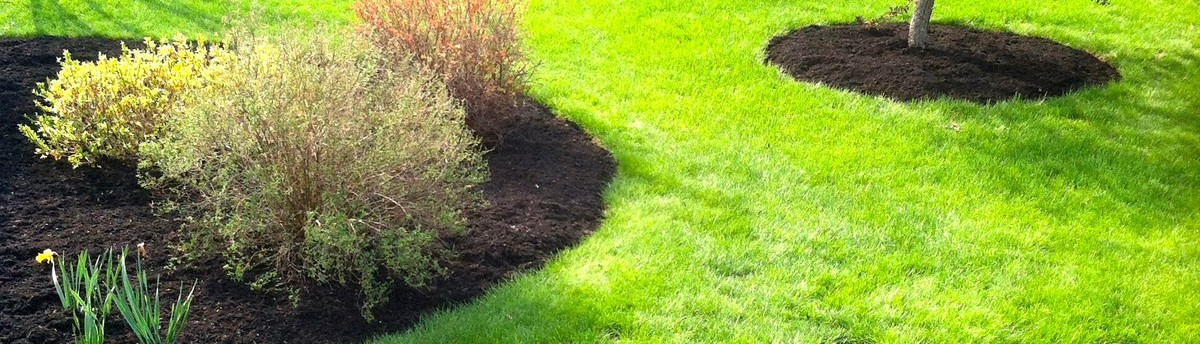 - Busy Bee Landscaping Inc - Amherst, MA, US 01002