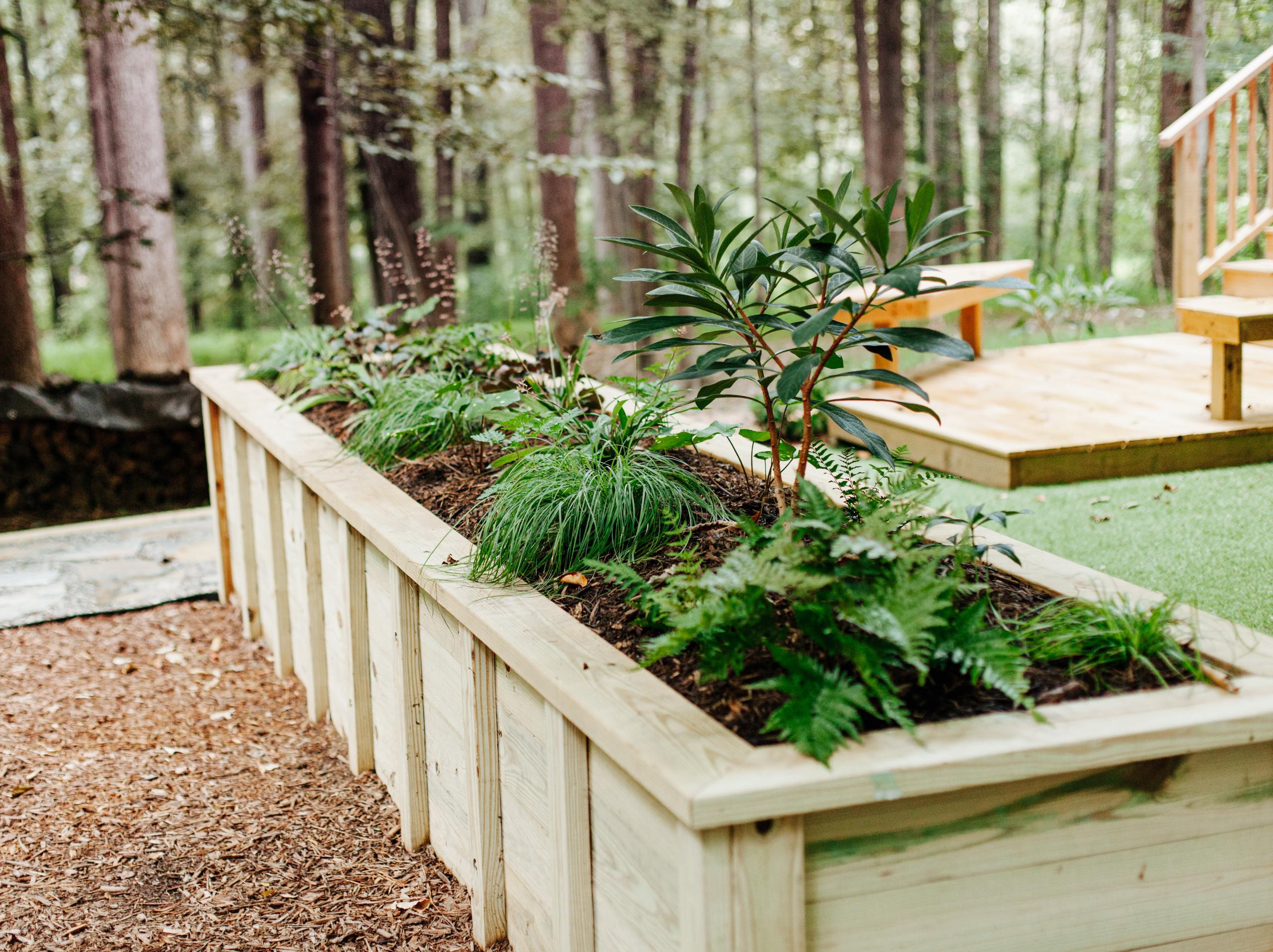 Backyard Studio Garden in Chapel Hill