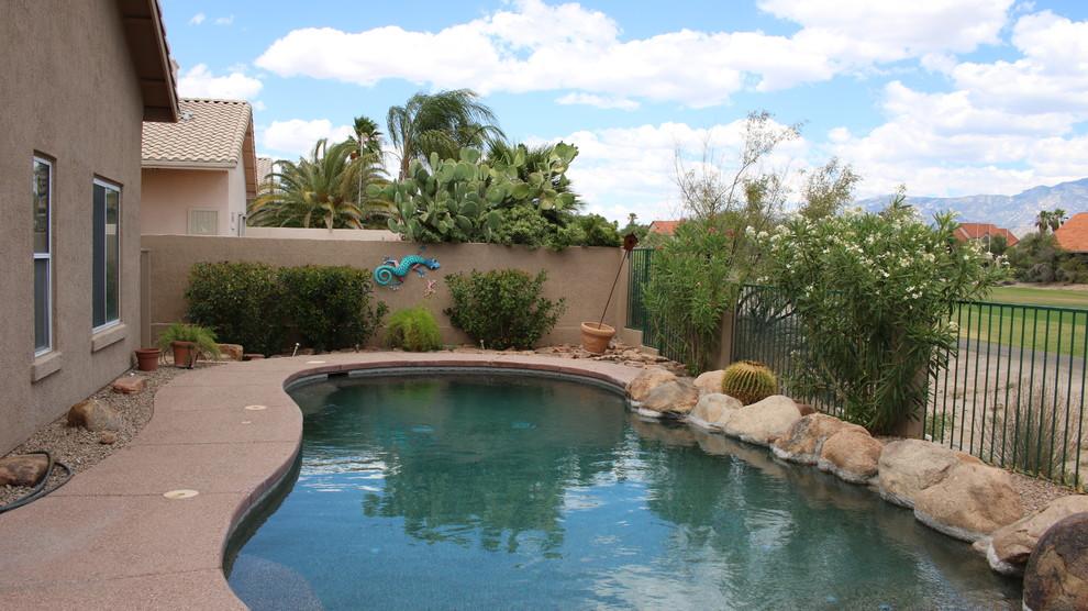 Mid-sized trendy home design photo in Phoenix