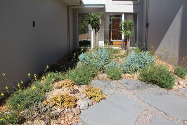 succulent gardens beach style - Garden Design Brisbane