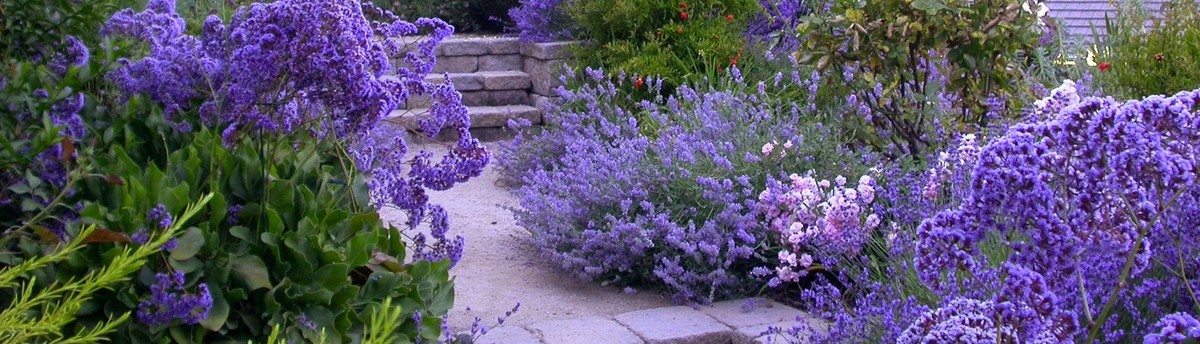 Jenna Bayer Garden Design, Inc.   Mountain View, CA, US 94043