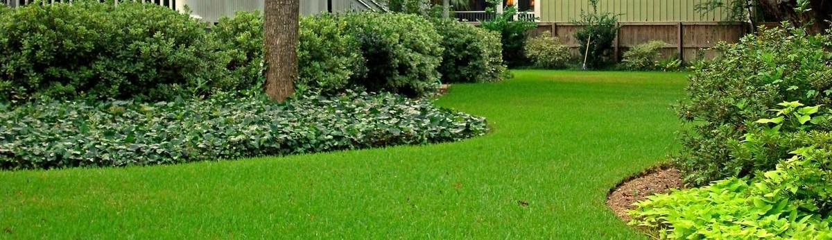 Action Sod U0026 Landscape Gardens   Miami, FL, US 33183