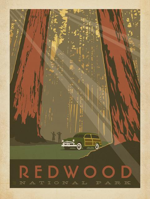 Art & Soul Of America: Redwood National Park Gallery Print.