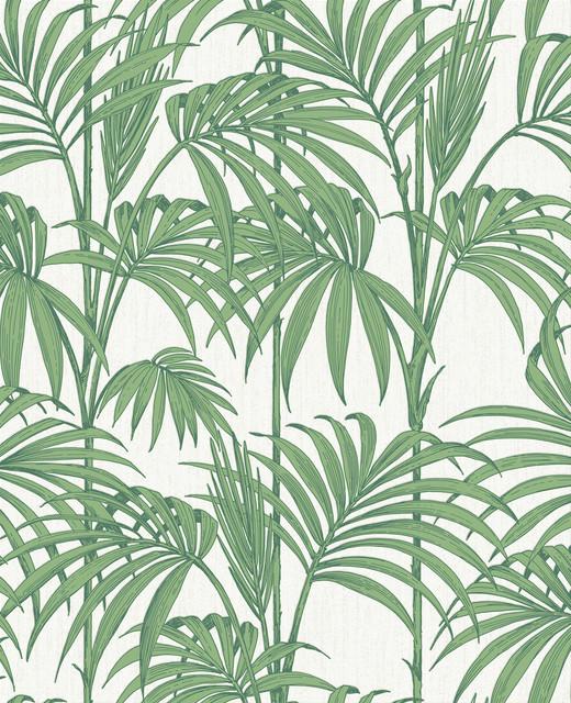 Honolulu Palm Green Wallpaper by Julien MacDonald