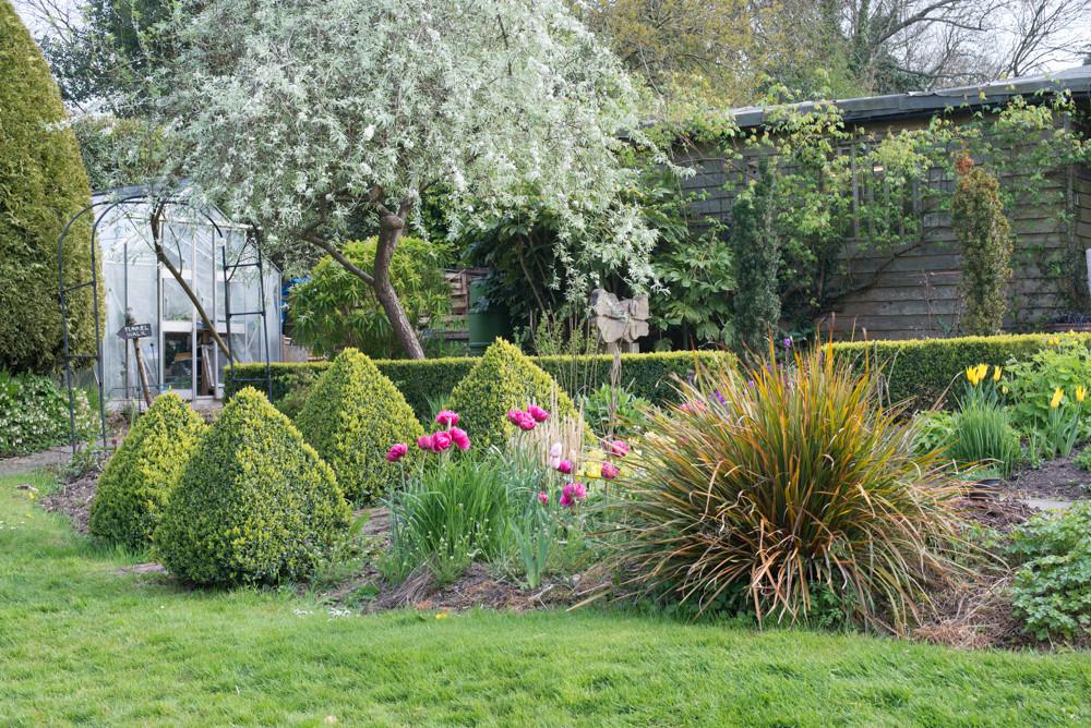 A Plantsman Garden
