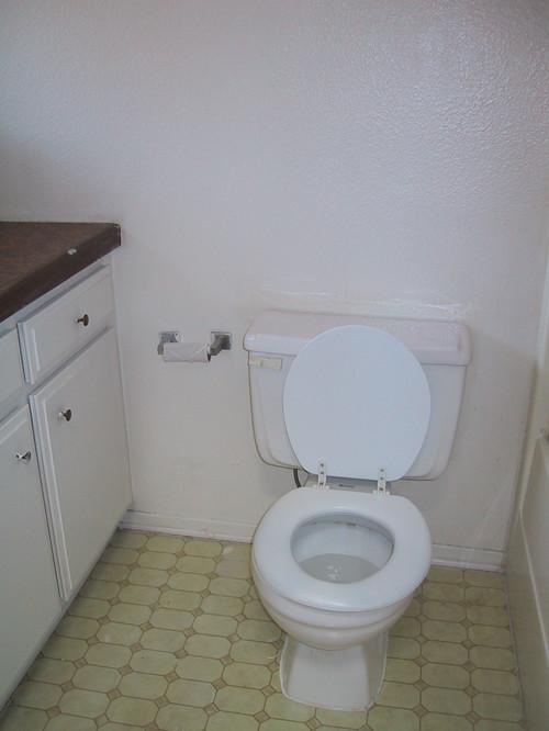Remodeling Bathroom Slab Foundation floors - have dog, concrete slab foundation, vinyl plank?