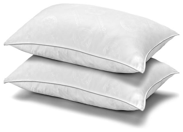 2-Pack Micronone Allergen Free Gel Fiber Soft Stomach Sleeper Pillows, Queen