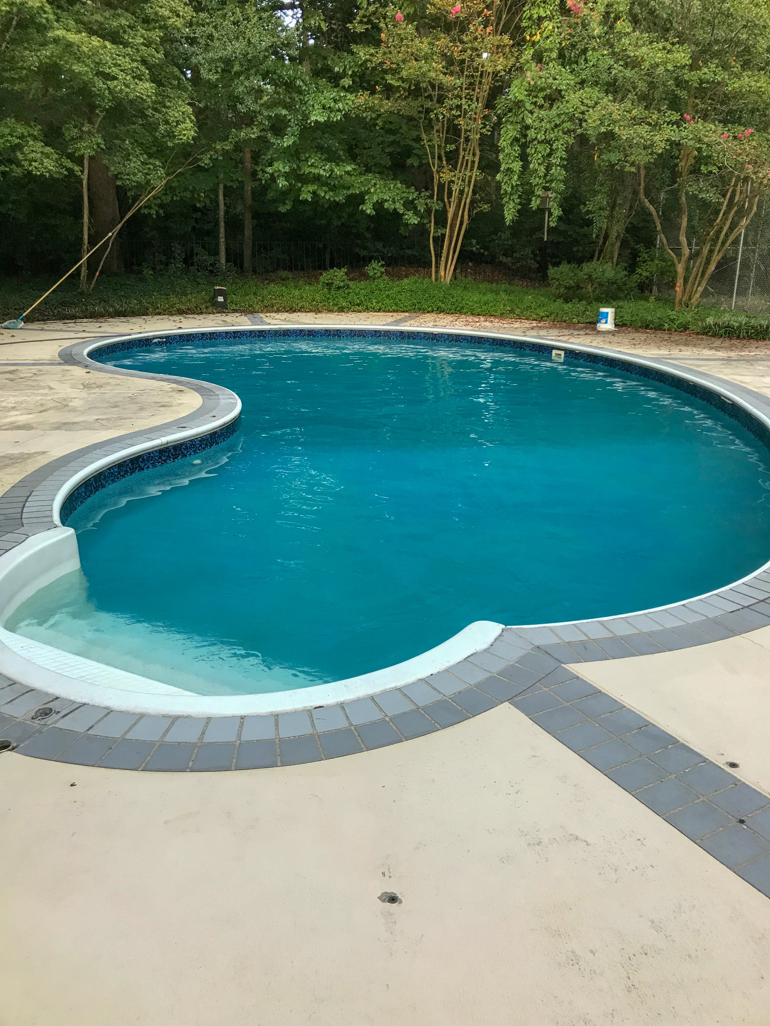 BEFORE:  Pool patio and outdoor living space