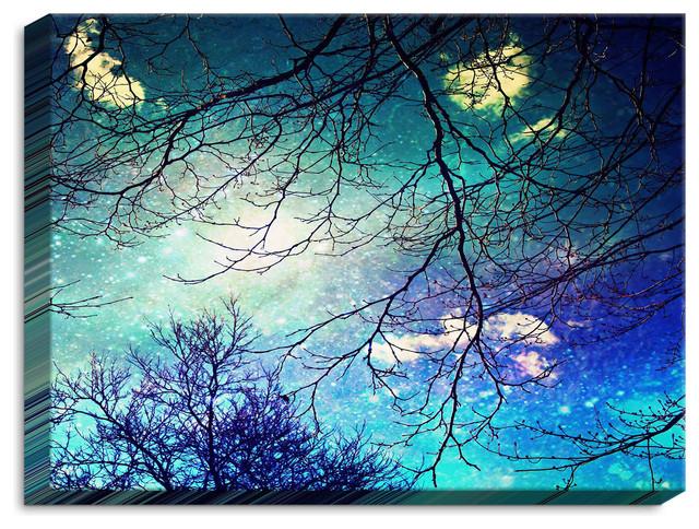 Illuminated Wall Art By Sylvia Cook - Night Sky.