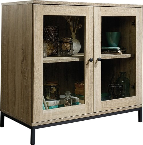 Accent Standard Wooden Cabinet with 2 Door