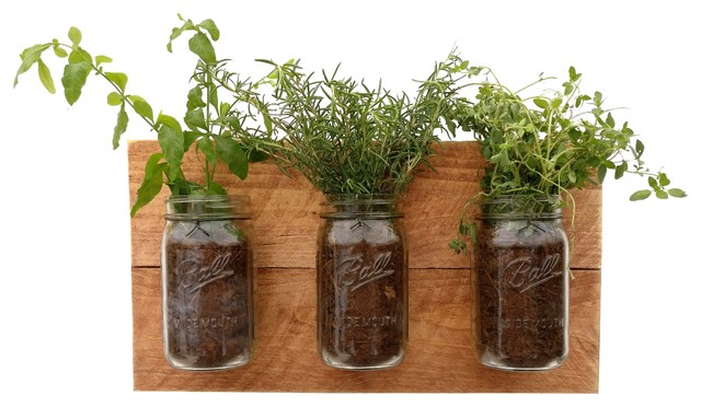 Herb Planters reclaimed wood mason jar herb planter - farmhouse - indoor pots
