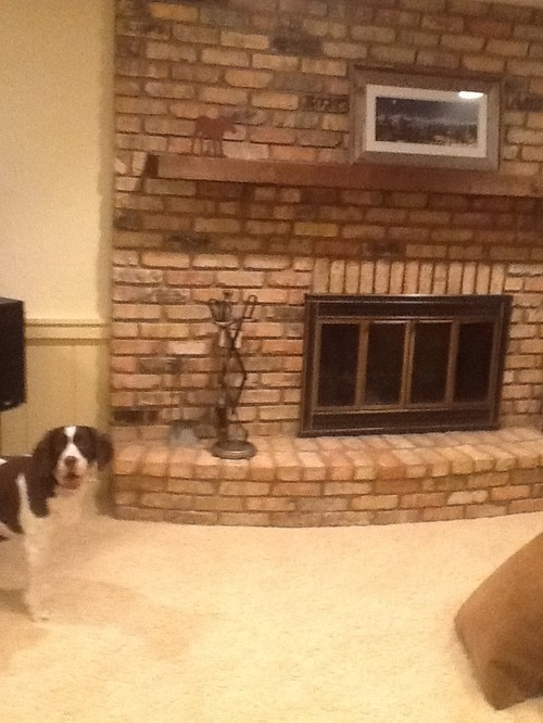 What color paint to go with brick fireplace?