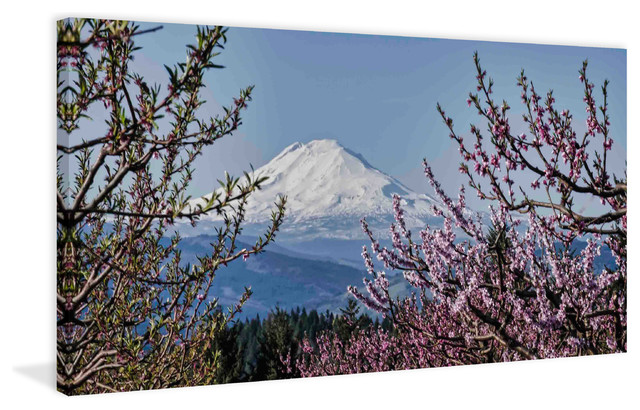 Quot Mt Adams In Spring Quot Painting Print On Canvas