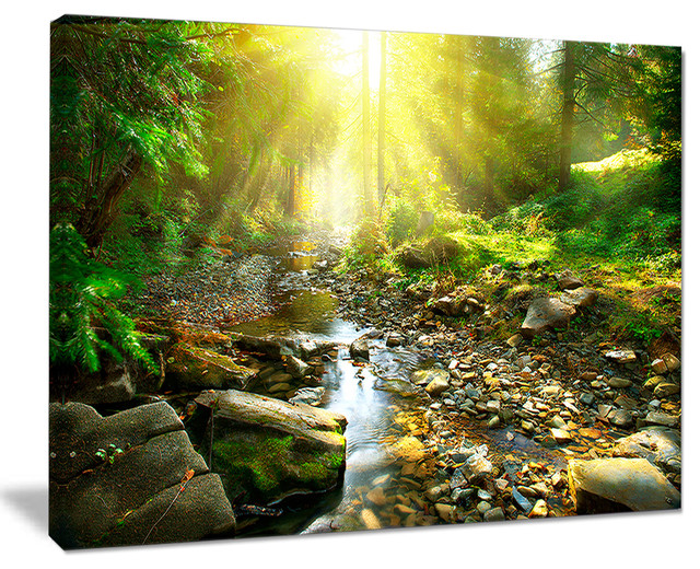 CANVAS Forest Stream Art print POSTER