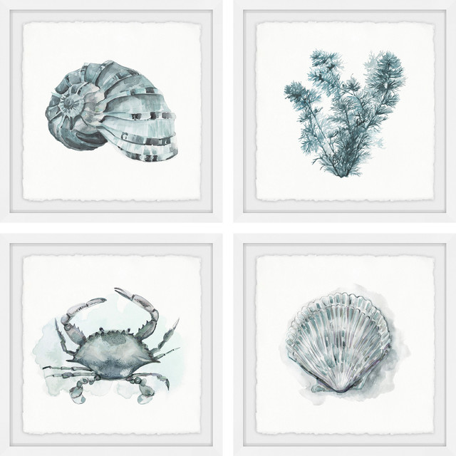 """sea Life Quadriptych"" Framed Painting Prints, 24""x24"", 4-Piece Set."