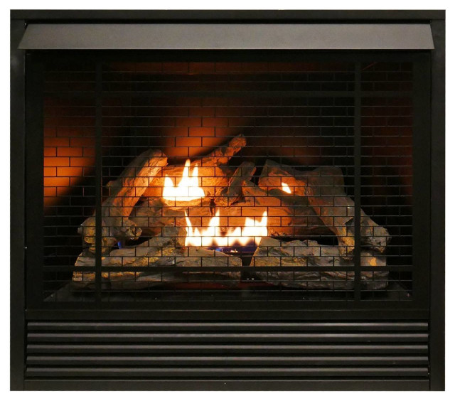 Duluth Forge Dual Fuel Ventless Gas Fireplace Insert 32 000 Btu