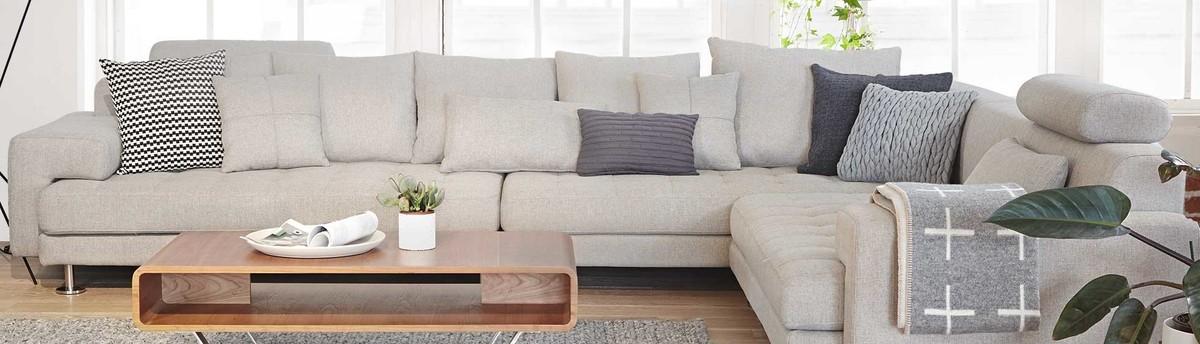 Elegant Dania Furniture