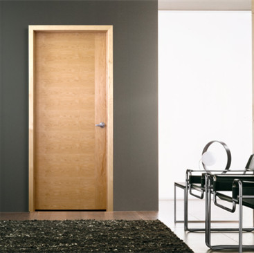 Midrange flush interior door for modern design modern for Flush doors designs