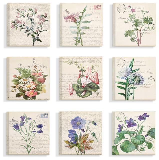 Vintage Postcard Script Flower Illustrations 9-Piece Canvas Art Set, 12