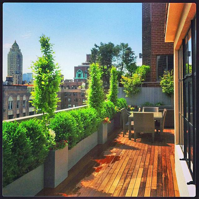 Roof Top Garden Terrace Garden Kitchen Garden Vegetable: NYC Rooftop Terrace: Roof Garden, Deck, Outdoor Dining
