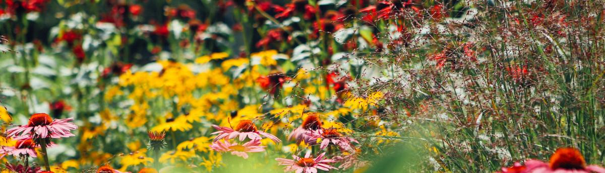 Parker Garden Design Nashua NH US 03064
