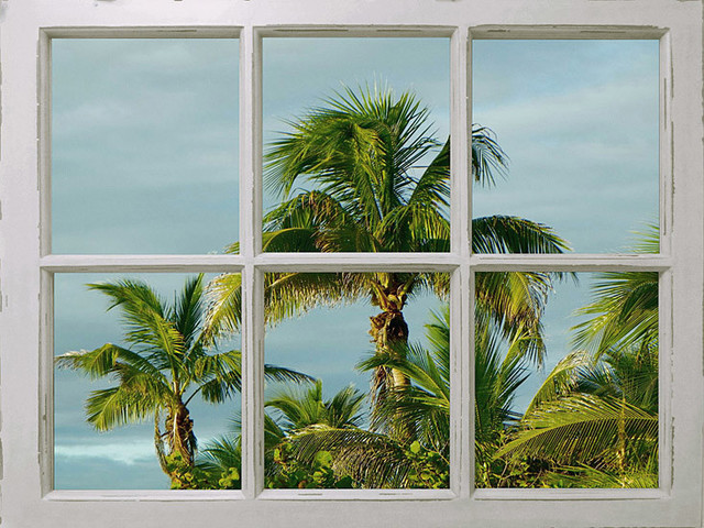 Window Palm Trees Graphic Art On Wrapped Canvas Tropical Prints And Posters By Penny Lane Publishing Inc