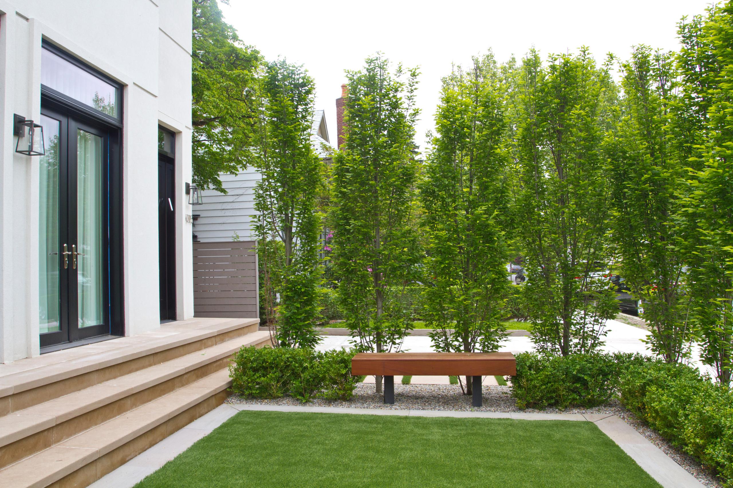 Large Hornbeam Hedge