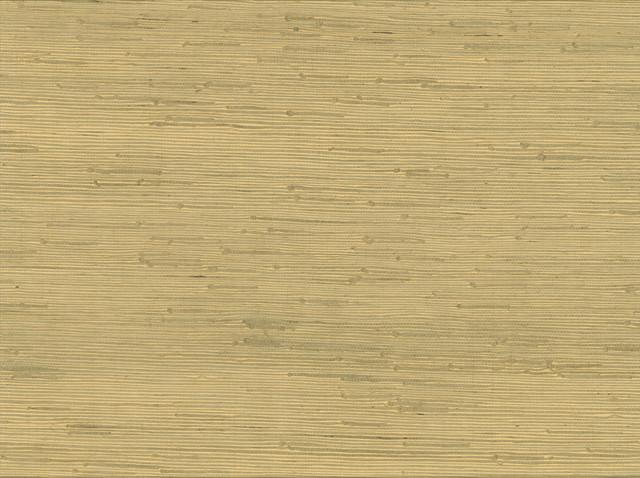 Shan Light Green Grasscloth Wallpaper Bolt