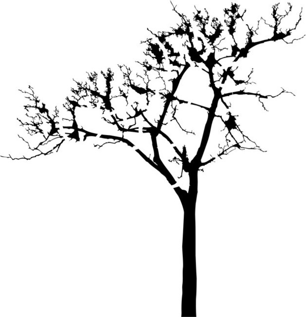 Leafless Tree Stencil Traditional Wall Stencils By
