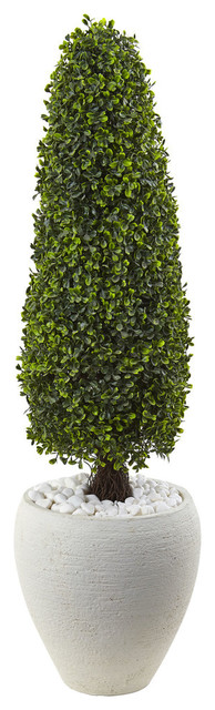 Boxwood Topiary with Textured White Planter in Green