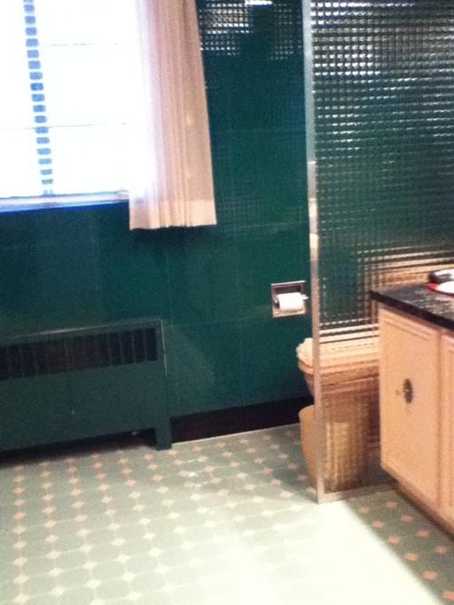 Fantastic Help Needed Update Bathroom With Dark Green And Pink Fixtures Zs94
