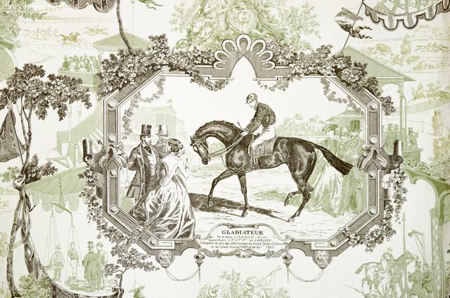 Horse toile fabric Gladiateur equestrian green