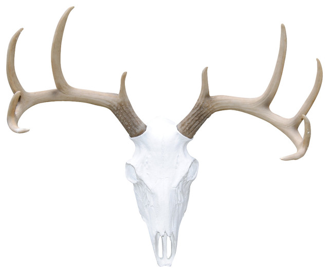 Deer bathroom decor - Deer Skull Natural Antlers Wall Mount Southwestern