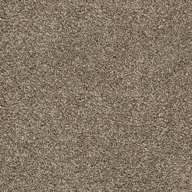 Tigressa Carpet Colors Floor Matttroy