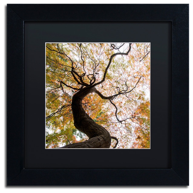 'Under a Japanese Maple 2' Matted Framed Art - Contemporary - Prints ...