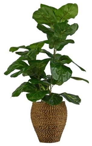 Faux Fig Plant With Rope Basket - Beach Style - Artificial Plants ...