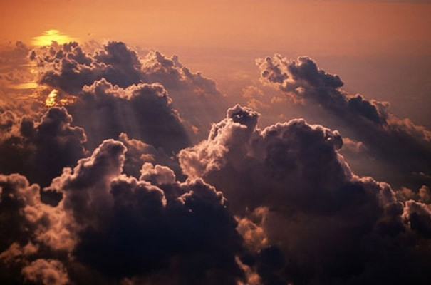 Heavenly clouds photo wall mural reviews houzz for Birkenrinde wall mural