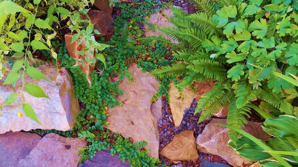 Indian Springs Rain Garden