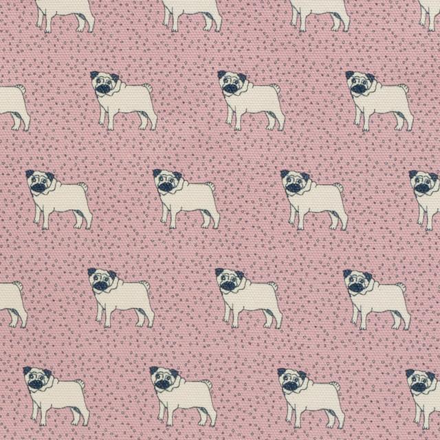dotty pug printed canvas