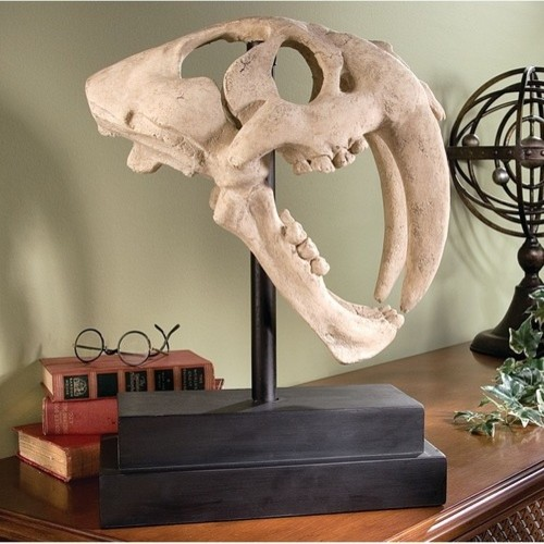 Saber-Toothed Tiger Skull Artifact in Stone