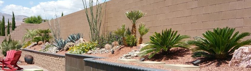 - Plant Wise Landscaping - Las Vegas, NV, US 89131